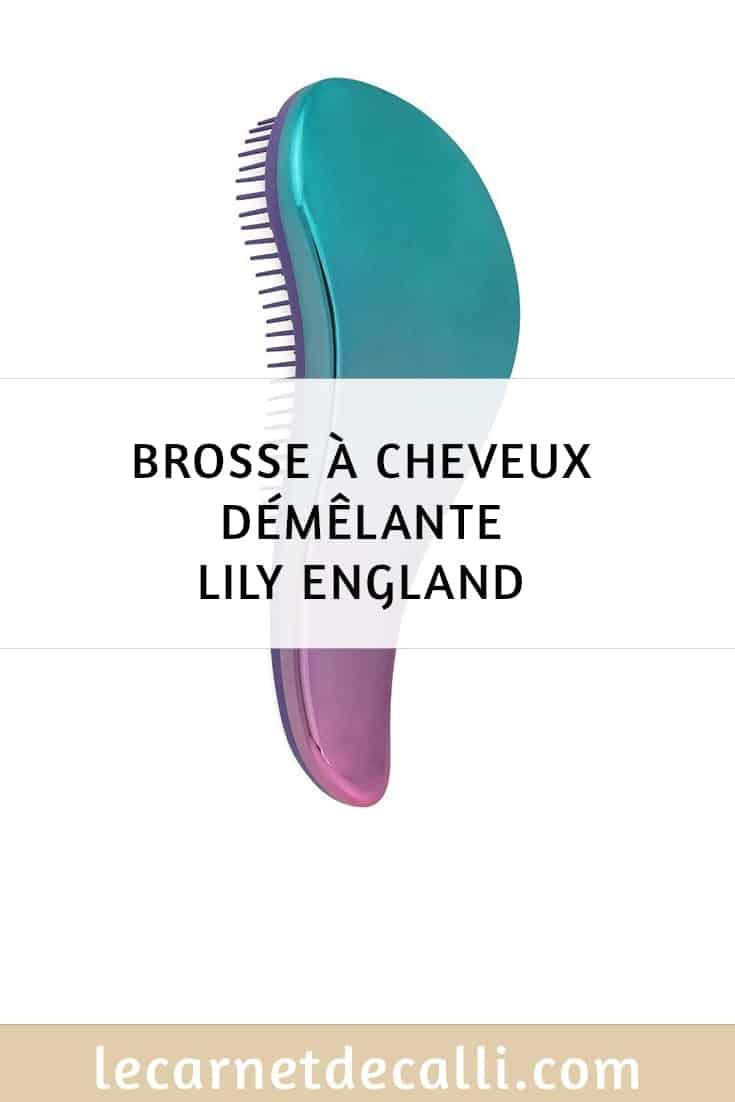 brosse à cheveux démêlante lily england