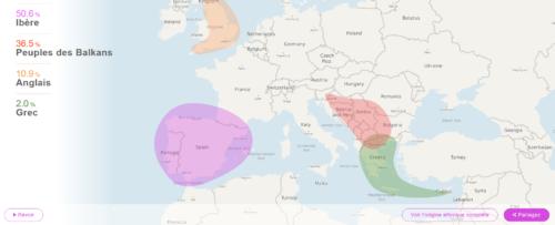 vue global adn