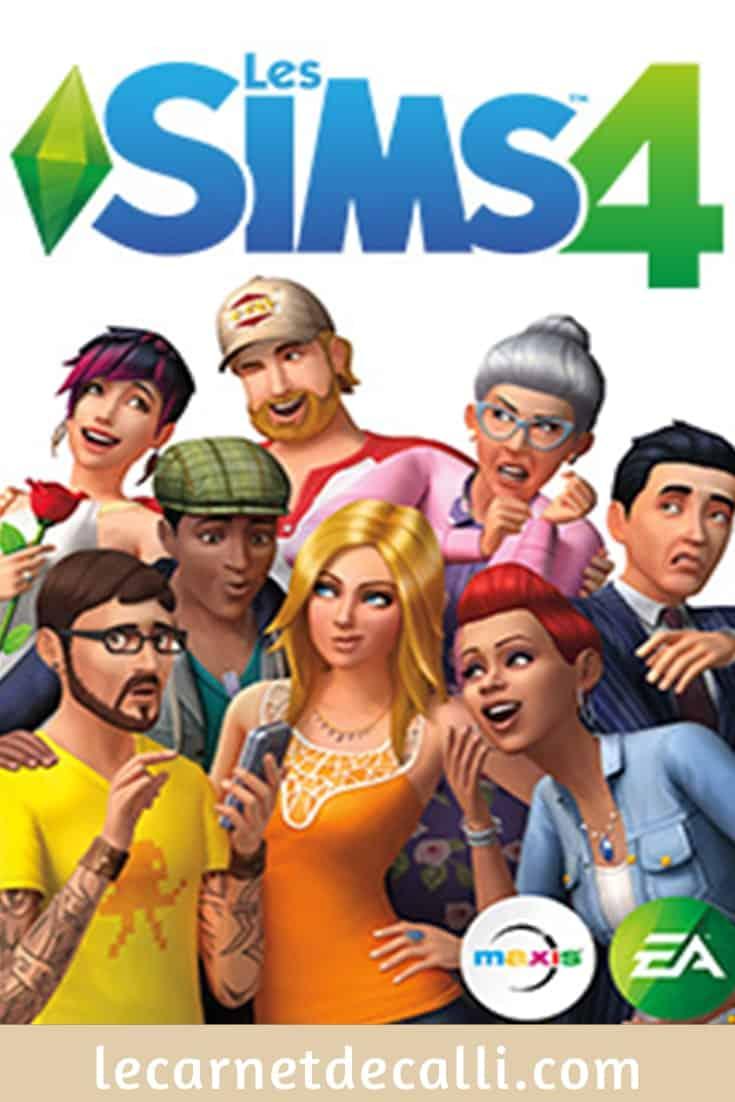 jeu vidéo sims4