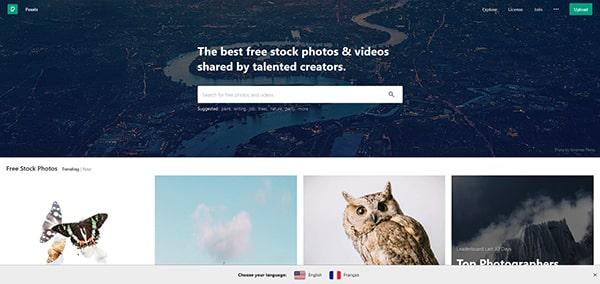 Capture d'écran du site pexels