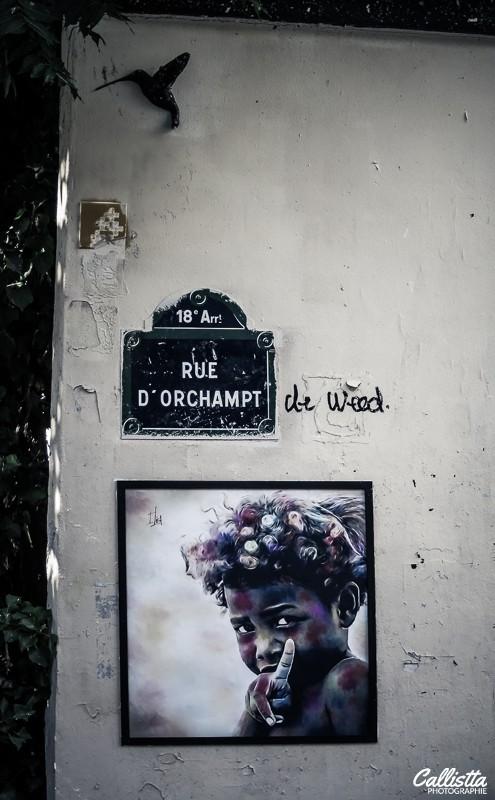 Montmartre,promenade à montmartre,promenade à pied montmartre,promenade à montmartre paris,callistta photographie